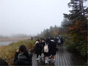 奥入瀬渓流の散策