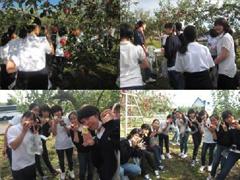 秋のリンゴ狩り