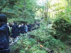 奥入瀬渓流を散策
